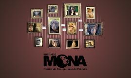 Copy of FUNDACIÓ MONA