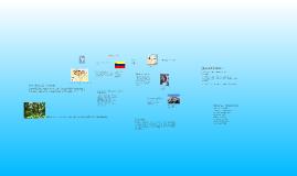 Copy of Venezuela Prezi