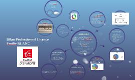 Bilan Professionnel Licence
