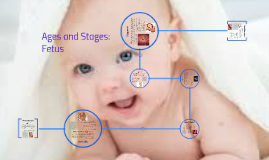 Ages and Stages of the Father During Pregnancy