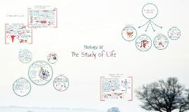 Copy of Biology 12