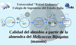 Copy of Calidad del almidón a partir de la almendra del Melioccus Bi
