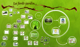 La forêt-jardin...