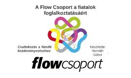 A Flow Csoport a fiatalok foglalkoztatásáért