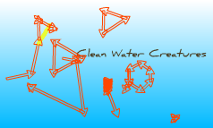 Clean Water Creaters