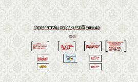 FOTOSENTEZİ