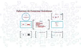 PgBarman ile Postgresql Yedekleme