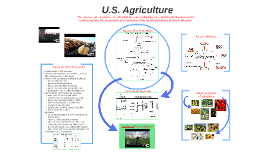 The American Ag Industry