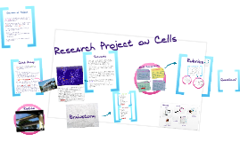 Copy of Research Project on Cells