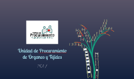 Universidad_2017