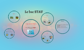 Copy of Le bac STAV