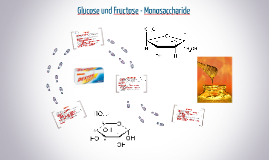 Glucose und Fructose - Monosaccharide