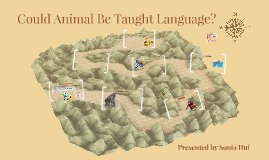 Could Animal Be Taught Language?