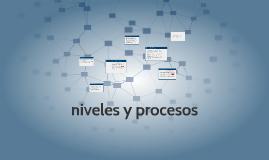 niveles y procesos