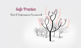 Marking Criteria for Safe Practice