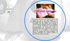 Control Interno