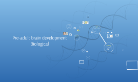 L2: Pre-adult brain development