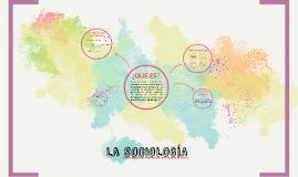 Copy of SOCIOLOGIA