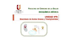 Unidad Nº9 Biosíntesis de Ácidos Grasos y TAG