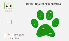 TREBALL FINAL DE GRAU SUPERIOR