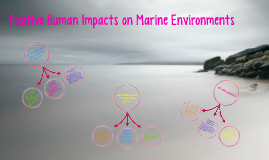 Copy of Positive Human Impacts on Marine Environments