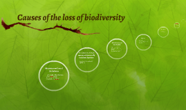 Causes of the loss of biodiversity