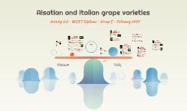 Alsatian and Italian grape varieties