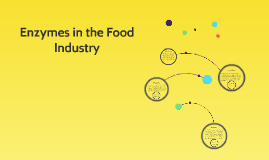 Enzymes in the Food Industry