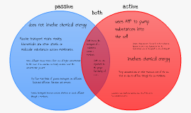 Passive vs. Active Transport by austin donaldson on Prezi