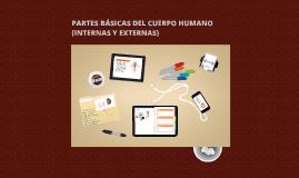 Copy of PARTES BÁSICAS DEL CUERPO HUMANO (INTERNAS Y EXTERNAS)