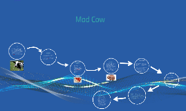 Copy of Mad Cow