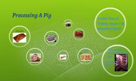 Processing A Pig