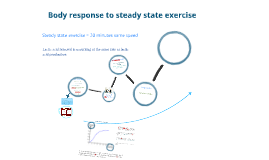 Body Response to steady state exercise