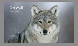 Copy of de wolf