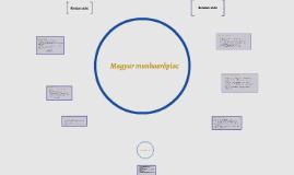 Magyar munkaerőpiac