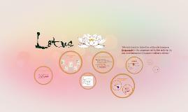 Lotus- Concept & Design