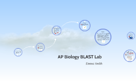 Copy of AP Biology BLAST Lab