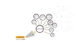 Conceptos principales e instrumentos de la estrategia