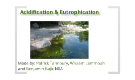 Acidification & Eutrophication