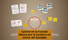 Copy of Control de la Función Motora por la Corteza y el tronco del