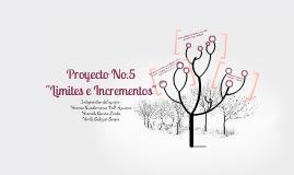 """Proyecto No.5 """"Limites e Incrementos"""""""