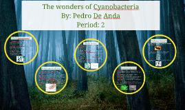 The wonders of Cyanobacteria