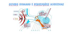 Copy of Audição