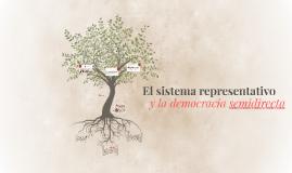 Copy of El sistema representativo