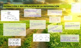 Copy of EXTRACCIÓN Y RECOPILACIÓN DE LA INFORMACIÓN
