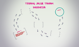 TEBANG JALUR TANAM INDONESIA