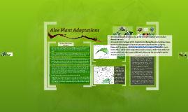 Copy of aloe plant adaptations