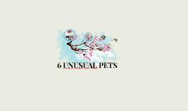 6 UNUSUAL PETS