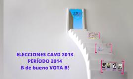 ELECCIONES CAVD 2013