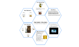 The Bee Colony